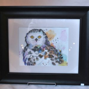 Water colour Owl
